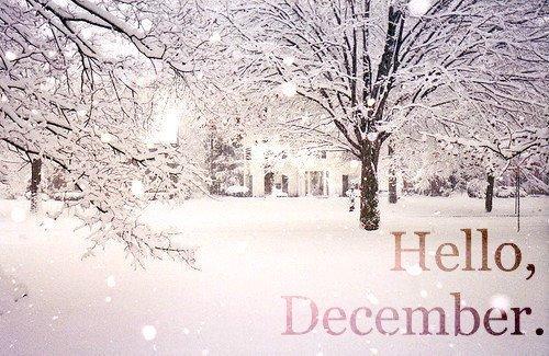 december monthlies awareness month of awareness months month world ...