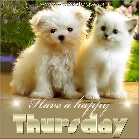 Happy Thursday Images With Dogs It s Thursday