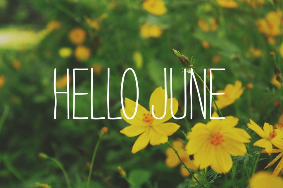 June 2017 Monthly, Weekly And Food Celebrations